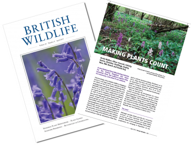 British Wildlife article cover