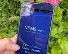 App displayed on phone screen with Red Campion in the background